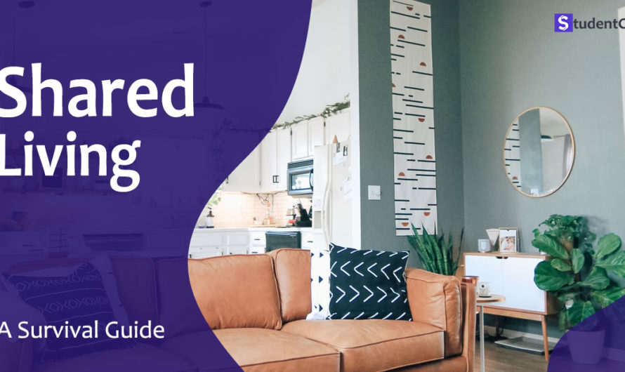 How to live in shared Accommodation: A Survival Guide